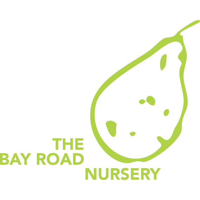 The Bay Road Nursery